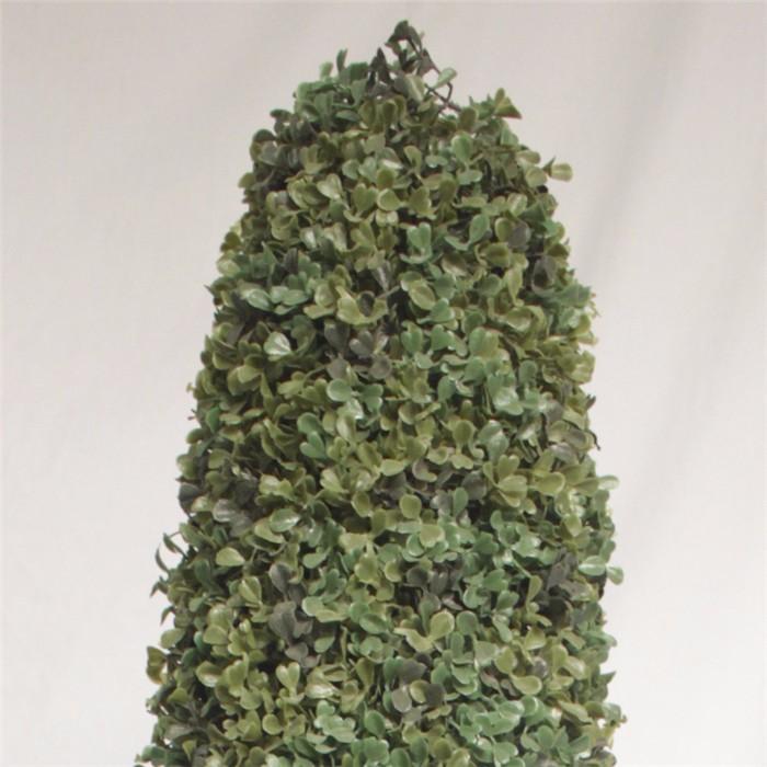 米兰草造型盆栽批发_植物造型盆栽价格