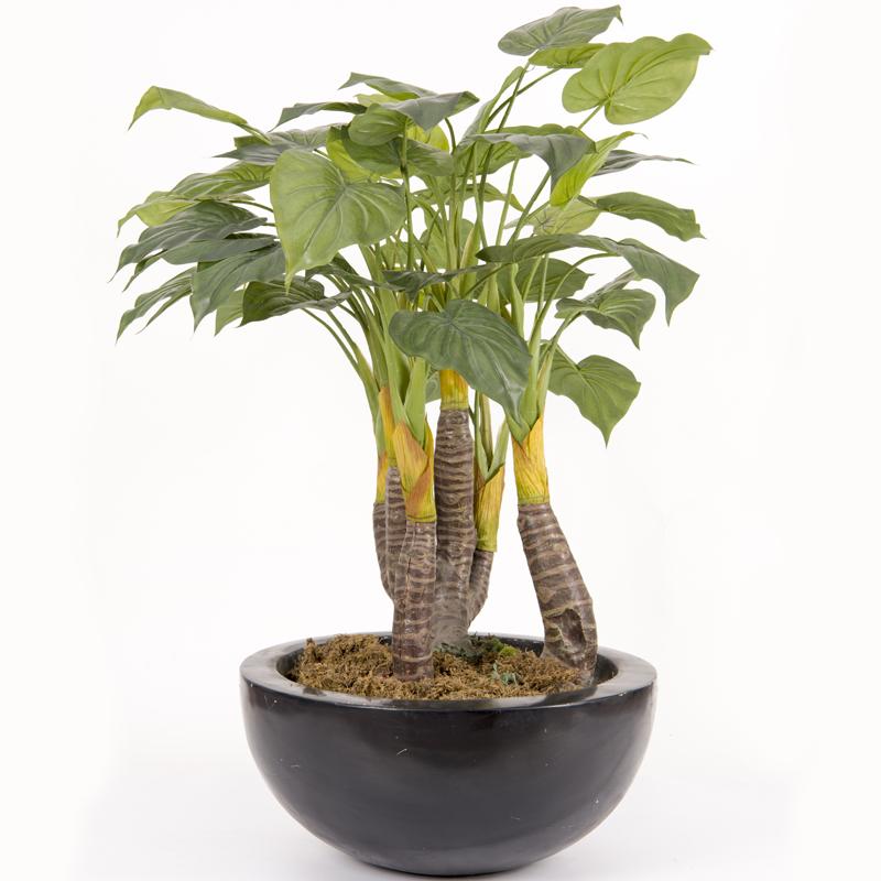 仿真仙芋盆栽