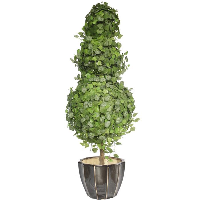 藤球造型盆栽批发_造型植物盆景