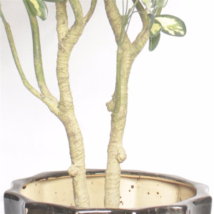 仿真七星叶盆栽价格_人造七星叶花树