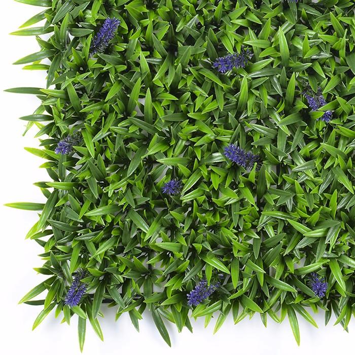 水草加薰衣草室内植物墙生产厂家