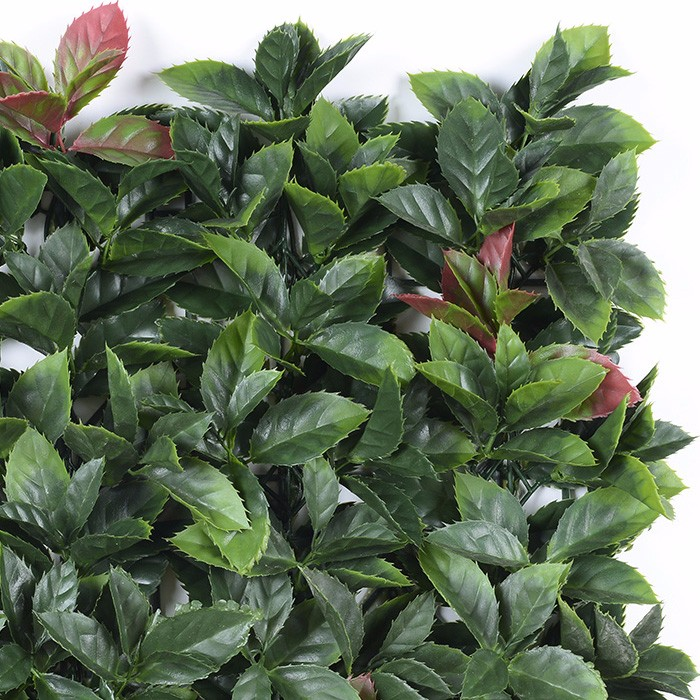 桔叶绿化墙厂家_客厅阳台装饰垂直绿化植物墙